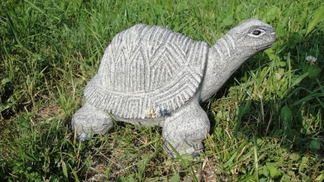 Schildkröte - Stein & Design Schwarzenbacher